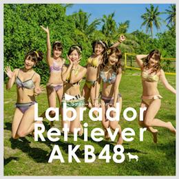 AKB48 36th ラブラドール・レトリバー 初回限定盤type-k